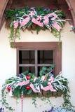 Cottage Window at Christmas stock photo
