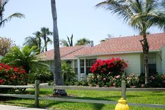 Cottage With Red Bougainvillae Stock Photo