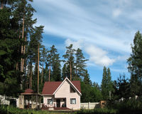 Cottage in the woods. Stock Images