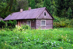 Cottage in the woods. Old abandoned house in the woods Stock Images