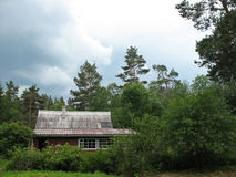 Cottage in the woods. Cloudy day Royalty Free Stock Image