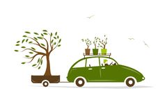 Cottager driving green car with tree in trailer Royalty Free Stock Photo