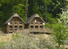 Cottages. A view of two cottages for rent in the woods Royalty Free Stock Photo