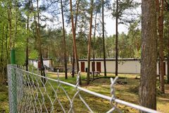 Cottages of autocamp in pine forest in Machuv kraj tourist area in spring before start of main season royalty free stock photography