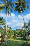 Cottages on the Bay in a tropical garden Royalty Free Stock Photos