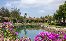 Cottages on the Bay in a tropical garden Royalty Free Stock Photo