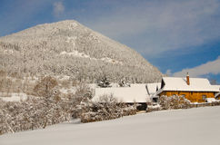 Cottages dans le vlkolinec photographie stock libre de droits