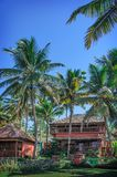 Cottages dans une palmeraie. Varkala, Kerala, Inde. Photo stock