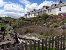 Cottages donnant sur le port le Northumberland de Craster Photo stock