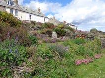 Cottages donnant sur le port le Northumberland de Craster Photographie stock