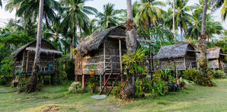 Cottages are made of palm leaves in the Tropics Stock Images