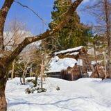 Cottages at Ogimachi Village Stock Image
