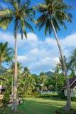 Cottages sur la baie dans un jardin tropical Photos libres de droits