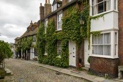 Cottages, vigne et pavé, Rye image stock