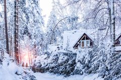 Cottages in the winter snow-covered forest at a ski resort stock image