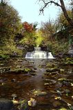 Cotter Force Image stock