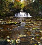 Cotter Force Royalty Free Stock Photo