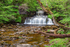 Cotter Force and Cotterdale Beck Royalty Free Stock Photography
