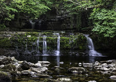 Cotter Force Royalty Free Stock Images