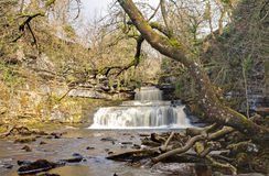 Cotterforce Wasserfall Lizenzfreie Stockfotografie