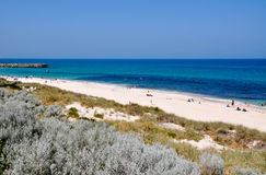 Cottesloe Beach: Indian Ocean View stock image