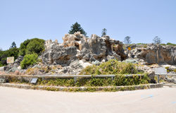 Cottesloe Beach: Limestone Cliffs stock image