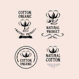 Cotton badges design, organic product.Vector with graphic. Royalty Free Stock Image