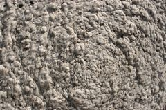 Cotton Bale. Closeup of a Bale of cotton in south Georgia Royalty Free Stock Photography