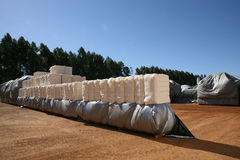 Cotton bales Stock Photos