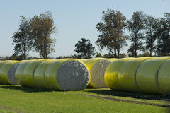 Cotton Bales Royalty Free Stock Photography