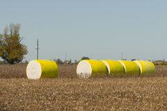 Cotton Bales Royalty Free Stock Photo