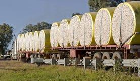 Cotton bales Royalty Free Stock Photo