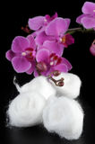 Cotton balls Stock Image