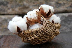 Cotton. Balls into a small basket Royalty Free Stock Photography