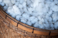 Cotton in the basket Royalty Free Stock Photos