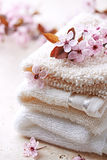 Cotton Bath Mitts. With spring flowers Royalty Free Stock Images