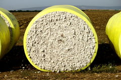 Cotton Block Royalty Free Stock Photo