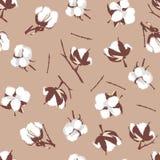 Cotton bolls beige seamless vector pattern Stock Photography