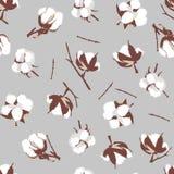 Cotton bolls gray seamless vector pattern Stock Photos