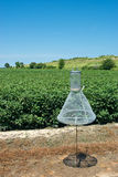 Cotton Bollworm Wire Trap Royalty Free Stock Images