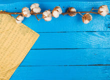 Cotton branch on a blue painted plank and a partiture of music Royalty Free Stock Photos