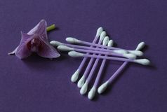Cotton buds Royalty Free Stock Photography