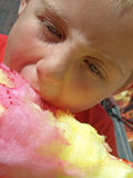 Cotton candy. Young boy eating cotton candy Royalty Free Stock Photography
