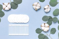 Cotton Cosmetic Makeup Removers Tampons. Spa concept. Flat lay background with cotton flowers, cotton pads, eared sticks, fresh. Eucalyptus twigs. Hygienic stock photo