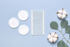 Cotton Cosmetic Makeup Removers Tampons. Spa concept. Flat lay background with cotton flowers, cotton pads, eared sticks, fresh. Eucalyptus twigs. Hygienic royalty free stock photos