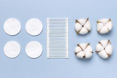 Cotton Cosmetic Makeup Removers Tampons. Spa concept. Flat lay background with cotton flowers, cotton pads, eared sticks. Hygienic. Sanitary swabs on blue stock photos