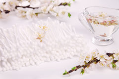 Cotton ear stick with apricot blossom Stock Image