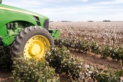 Cotton Farm Field Texas Plantation Tractor Agriculture Cash Crop Royalty Free Stock Photo