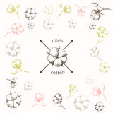 Cotton flower with crossed cotton swabs as Royalty Free Stock Photos