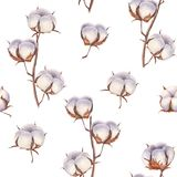 Cotton flower eco buds branches seamless pattern stock illustration